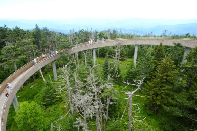 Final walk to the viewpoint at Clingmans Dome