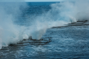 Blowholes in action